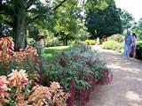 flower garden ideas full sun cheap flower garden ideas for small