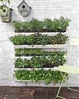 vertical garden using gutters vege garden pinterest