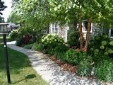 were taken in my garden the first of august 2012 enjoy your summer