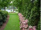 elegant georgian manor house garden traditional landscape