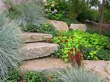 ... Cheap Landscaping Ideas For Backyard , Cheap Landscaping Ideas For