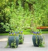 large outdoor planters ideas