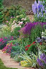 ... Plants | Tried-and-True Perennials for Your Garden | This Old House