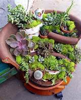 ideas for diy broken pots changed into fairy garden newnise