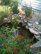 53 Cool Backyard Pond Design Ideas - DigsDigs