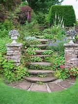 raised bed herb garden gardening herbs