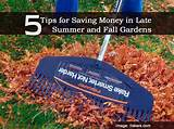 Tips for Saving Money in Late-Summer and Fall Gardens