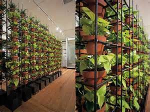 walls living walls vertical gardens interior gardens living design