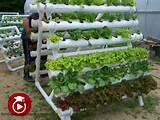 Jardín vertical con tubos de PVC | Lo Hago