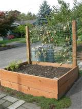Fancy Vegetable Garden Planter Boxes