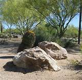 ... with large boulders was the theme for this desert landscaping design