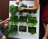 20. Cubby Hole : This modular planter vertically mounts on your wall ...