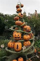 pumpkin display courtyard garden ideas pinterest