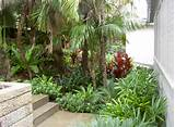 Tropical Garden Design