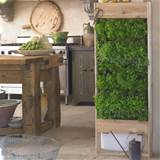 Living Wall Planter - Large Vertical Garden - The Green Head