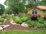 designing gardens ideas low maintenance garden