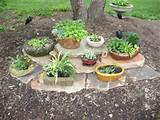 mini hosta in containers garden ideas miniature hosta garden plans