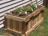 How To Build Your Own Container Garden From Reclaimed Shipping Pallets ...