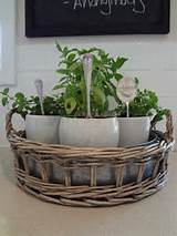 Kitchen Herb Garden Ideas (12 Pics) | Cool Ideas & Stuff | Pinterest