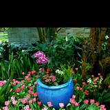 Container garden ideas | must try or do | Pinterest