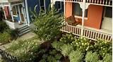 front yard landscaping ideas diy landscaping landscape design