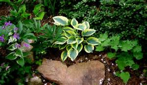 garden garden ideas astounding ideas for a small rock garden rock