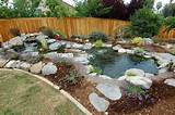 10 Awesome Home Garden Ponds Design Ever | Infobelezza