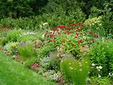 perennial flower garden plans | Landscaping - Gardening Ideas