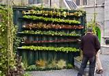 urbanos ayudan a recuperar zonas verdes y a mitigar la acumulaci n