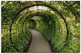 walkway | Green Architecture | Pinterest | Walkways, Covered Walkway ...