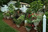 choose your planting container your container can be anything you