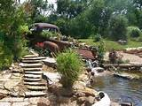 Our Favorite Garden Ponds From HGTV Fans | Landscaping Ideas and ...