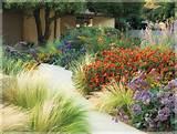 ... Garden Design, Front Yards, Orange Flowers, Gardens Design, Southern