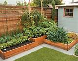 more design ideas in backyard raised garden bed