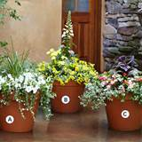 Set the planter on your deck or patio, along a pathway, or at the end ...