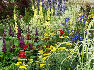 plant nectar rich flowers landscaping ideas and hardscape design