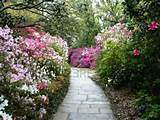 Beautiful garden path and flowers | Garden Ideas | Pinterest