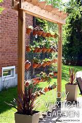 simple wooden structure with chicken wire makes a surface for