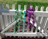 Posh Pooch Designs Dog Clothes: Lazy Daisy Chain and My Mini Garden