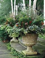 MARTHA MOMENTS: Festive Winter Urns