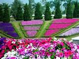 Garden: Minimalist Flower Garden Design — Inspiring Home Designs