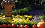 pumkins and flowers in a fall garden