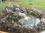 Small Koi Pond Small Backyard Koi Pond Ideas