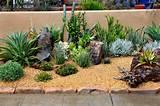 Frontyard Landscape Ideas - Succulent Gardens Design - Southwestern ...