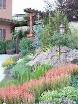 Drought-Tolerant Landscaping Ideas | Drought tolerant landscaping | P ...