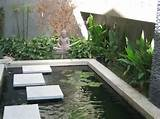 Zen Garden - Asian - garden - Nadia Designs