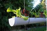 transforme calhas em jardineiras suspensas cozinhas itatiaia