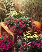 ... Fall Planter for California Gardens / Armstrong Garden Centers
