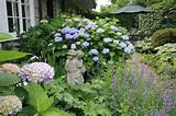 Cottage Garden Design Ideas - Landscaping Network