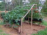 ... and garden projects is the process of building a garden trellis there